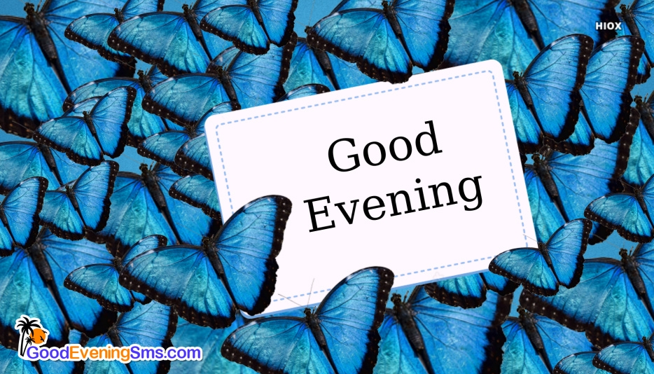 Good Evening Images With Butterfly