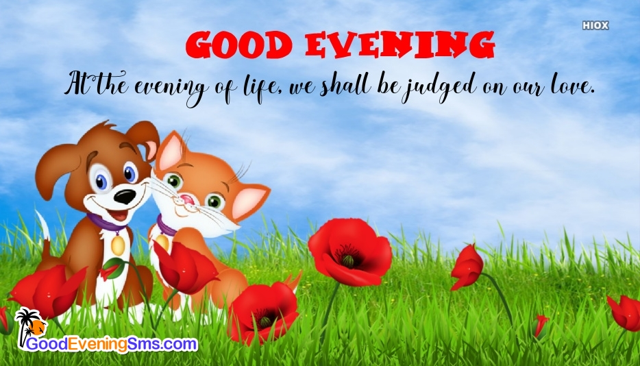 Cute Good Evening Message