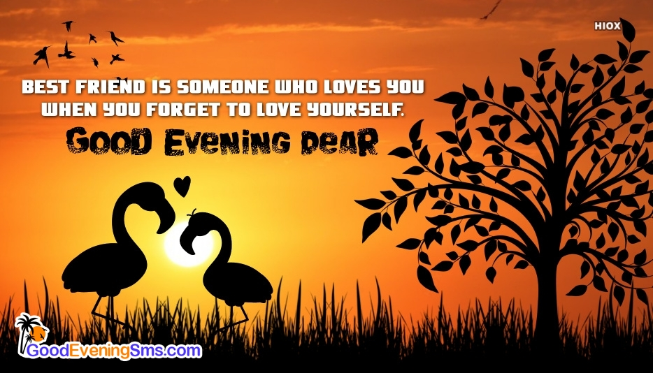 Good Evening Quotes For Best Friend