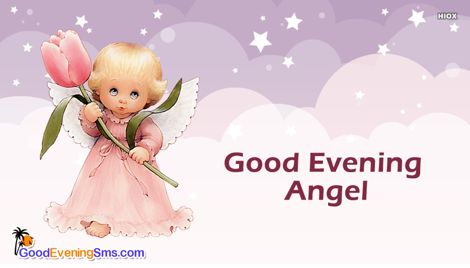Good Evening Angel