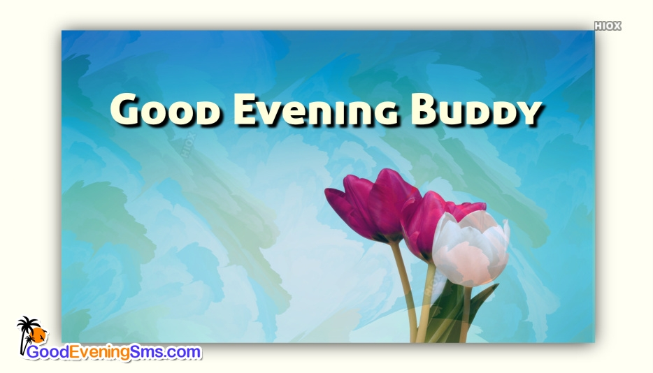 Good Evening Buddy Image