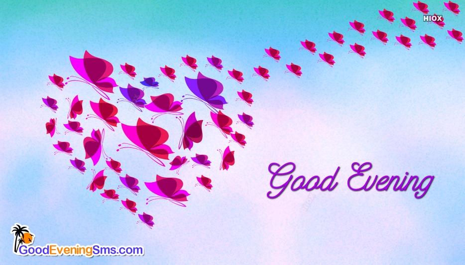 Good Evening Butterfly