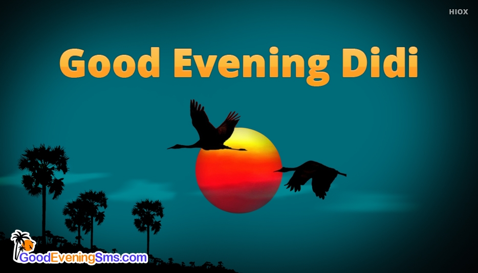 Good Evening SMS for Didi