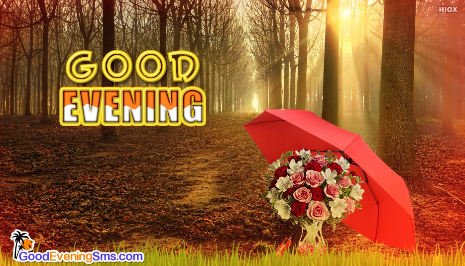 Good Evening Dp - Good Evening SMS for Everyone