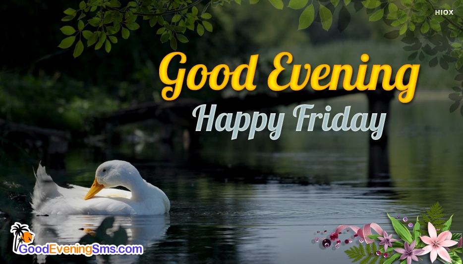 Good Evening Happy Friday - Good Evening SMS for Friday
