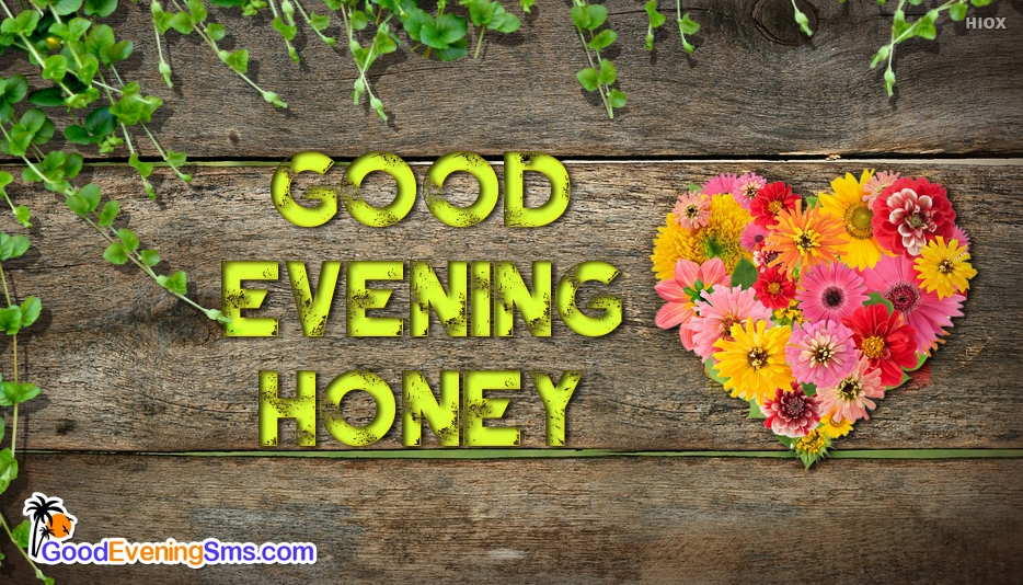 Good Evening Honey Image