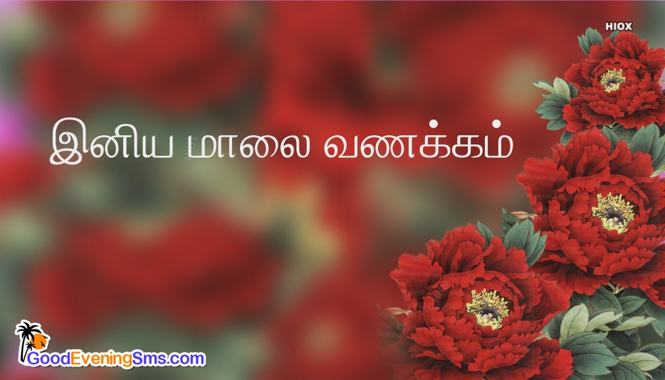 Good Evening In Tamil Hd