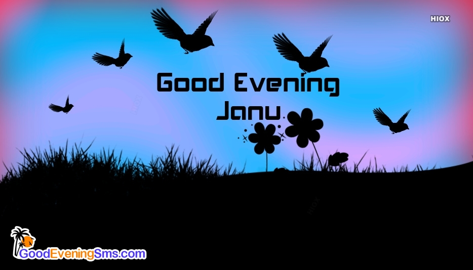 Good Evening Janu Image