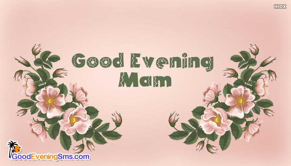 Good Evening Mam