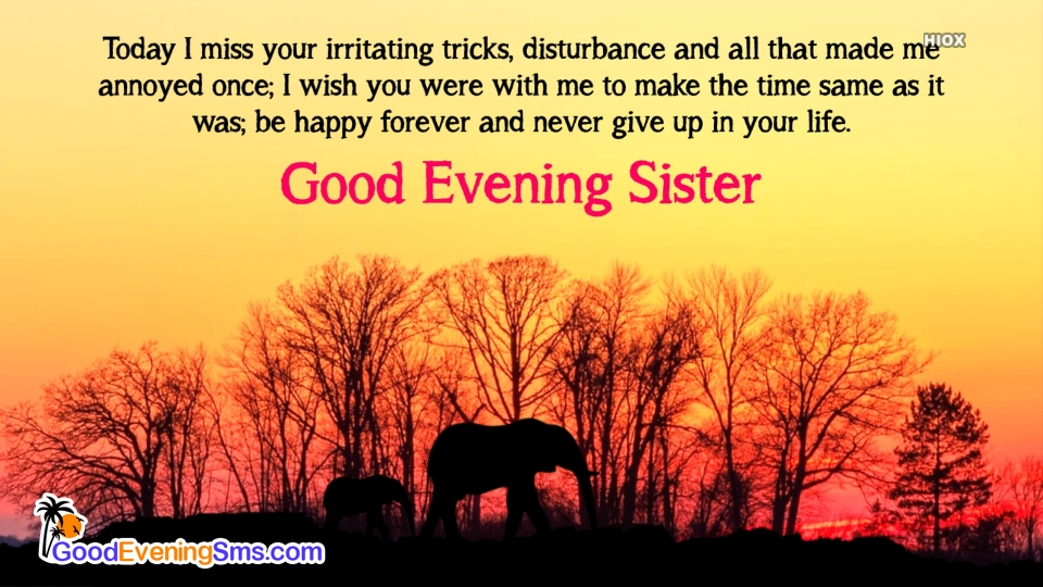 Good Evening SMS for Ster