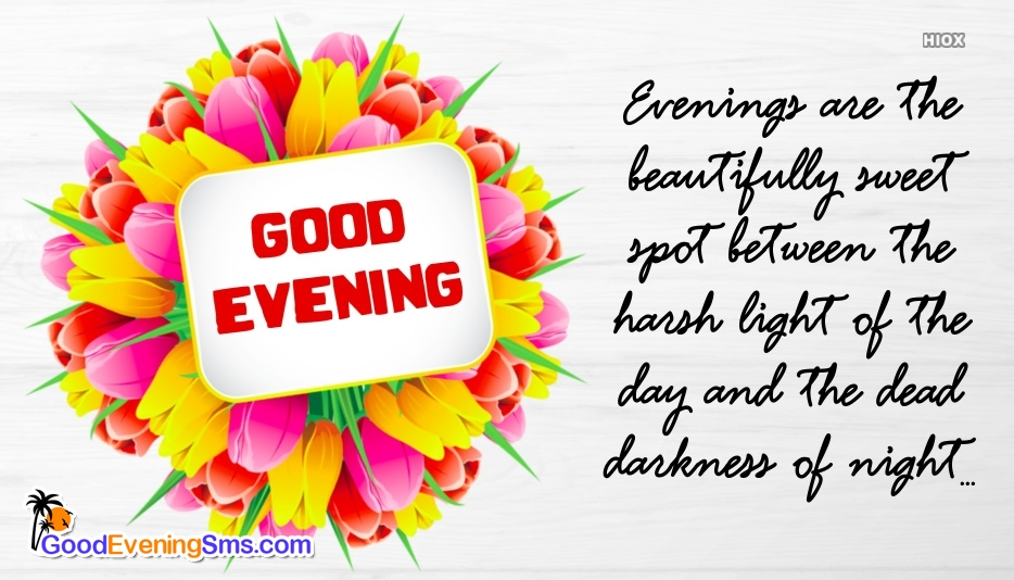 Good Evening Message Pic