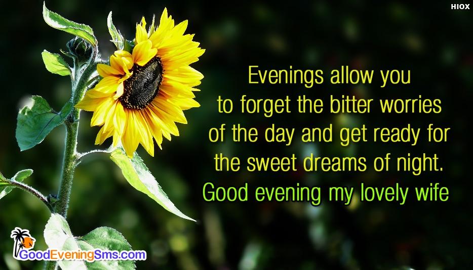 Good Evening Message to My Lovely Wife - Evenings allow you to forget the bitter worries of the day and get ready for the sweet dreams of night. Good evening my lovely wife