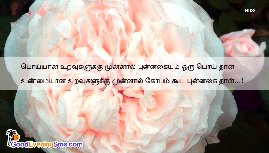 Good Evening Msg In Tamil