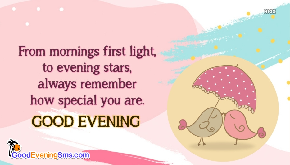 Good Evening SMS for My Dears
