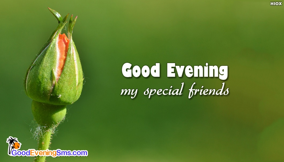 Good Evening My Special Friends Image