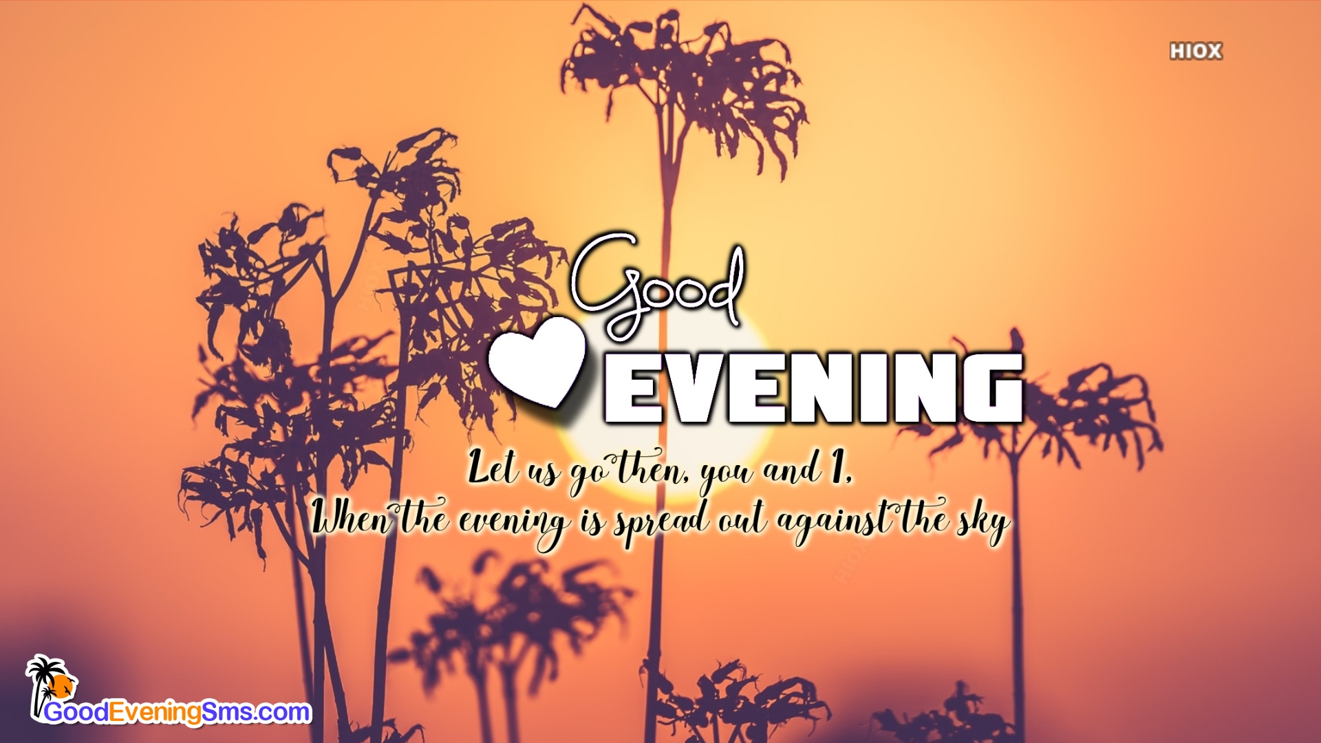 Good Evening Quotes To My Love