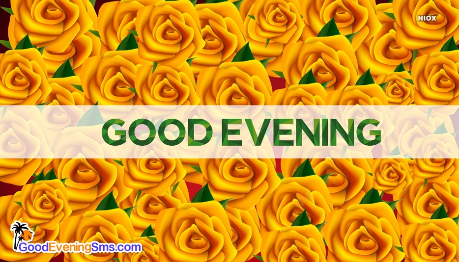 Good Evening Rose Wallpaper