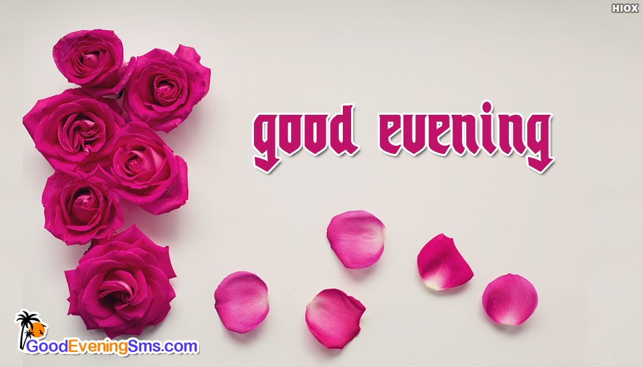 Good Evening Roses - Good Evening SMS for Roses