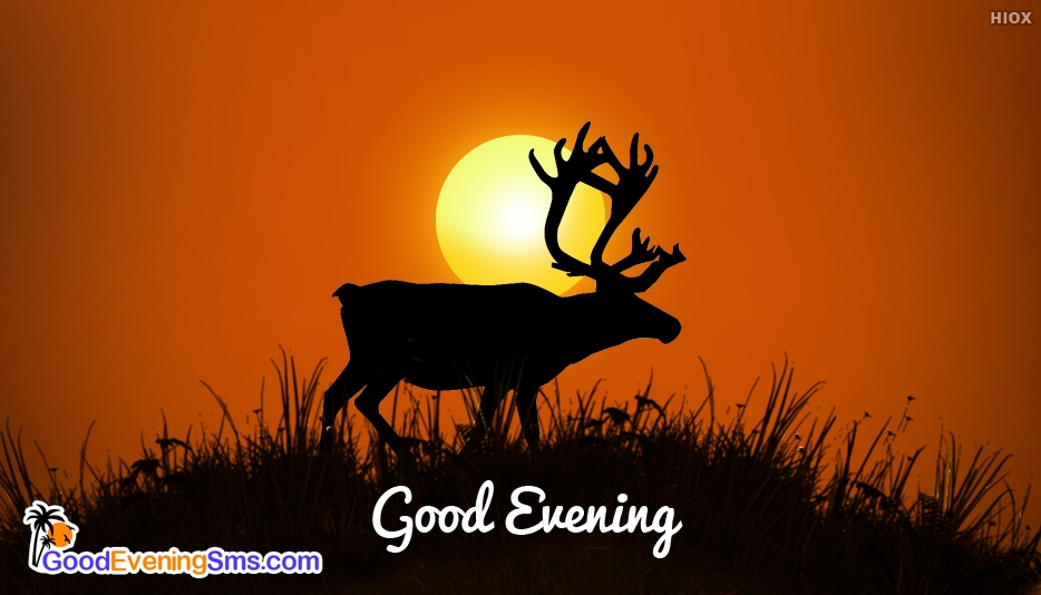 Good Evening Scenery Images