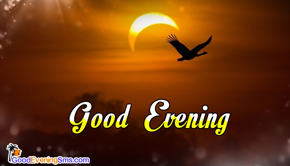 Good Evening SMS - Good Evening SMS for All