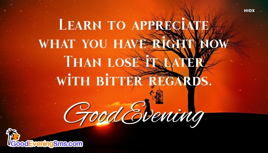Good Evening Sms In English | Learn To Appreciate What You Have Right Now Than Lose It Later With Bitter Regards