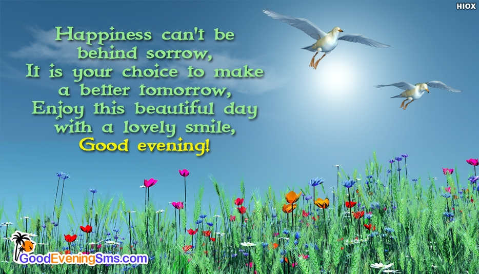 Good Evening SMS to My Boss - Happiness can
