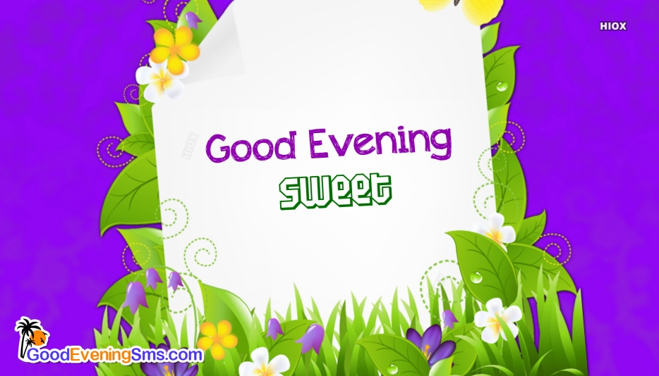 Good Evening Sweet