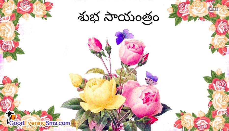Good Evening SMS for Telugu