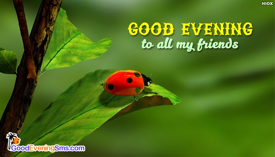 Good Evening To All My Friends - Good Evening SMS for Friends