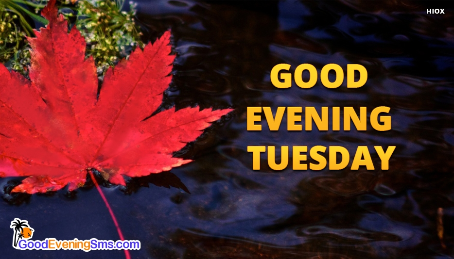 Good Evening Tuesday - Good Evening SMS for Tuesday
