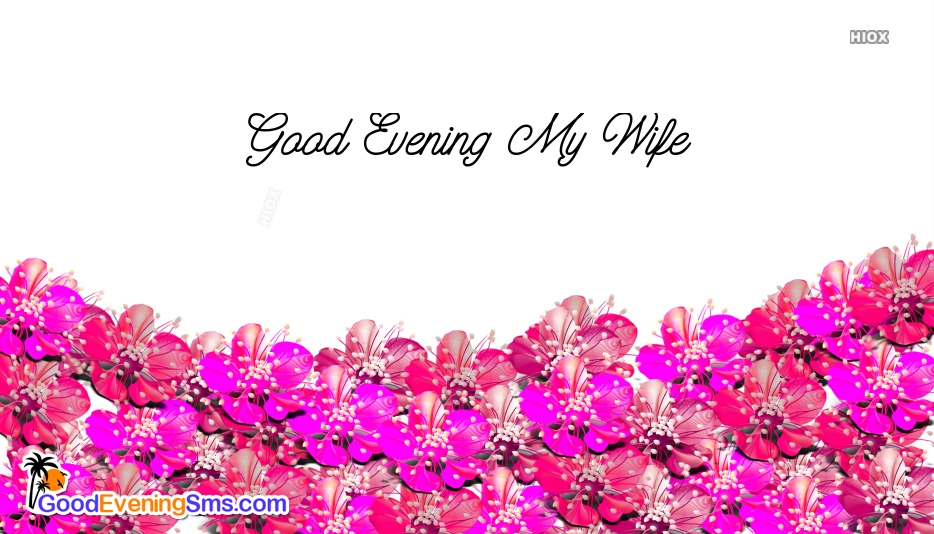 Good Evening SMS for Wife