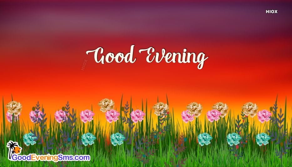 Pleasant Good Evening SMS Images, Pictures