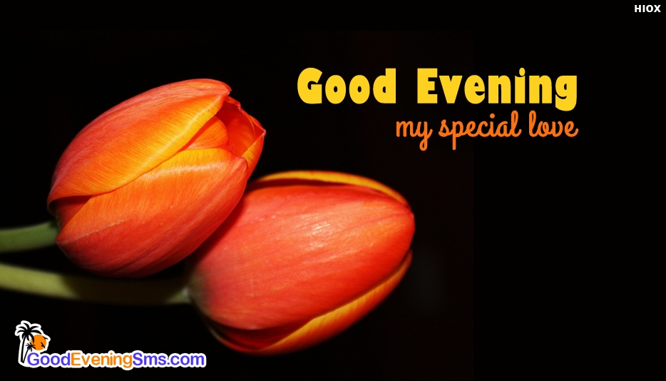 Good Evening Wishes For Someone Special - Good Evening My Special Love