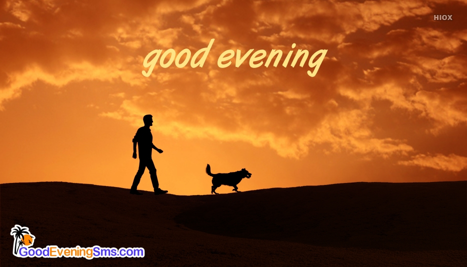 Good Evening With Dog