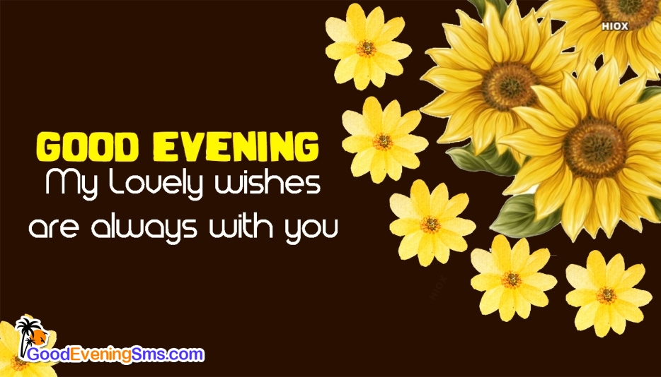 Good Evening SMS for Yellow Flower