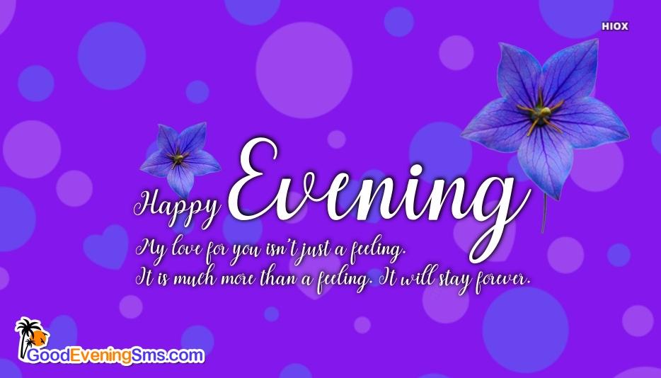 Happy Evening My Love