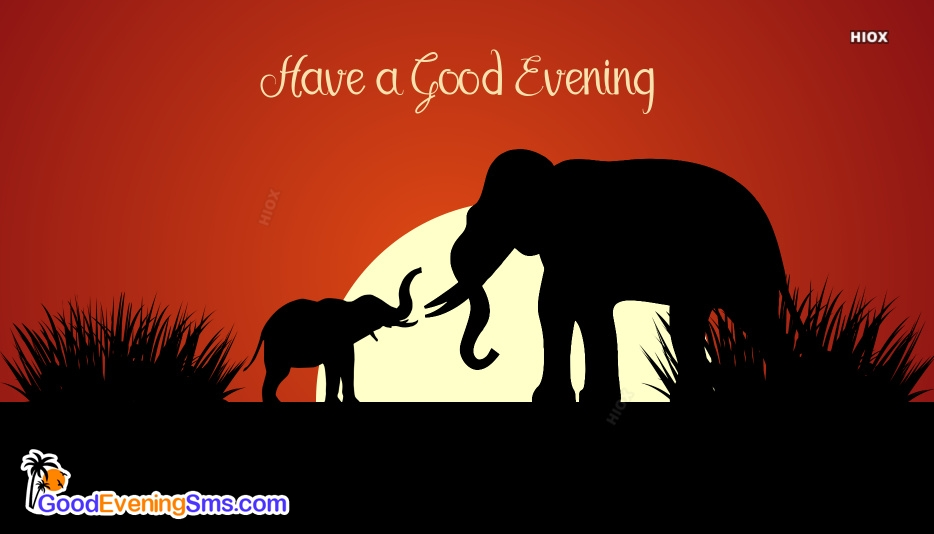 Good Evening Wishes, SMS, Messages
