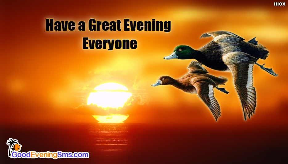 Have a Great Evening Everyone - Good Evening SMS for Wallpaper