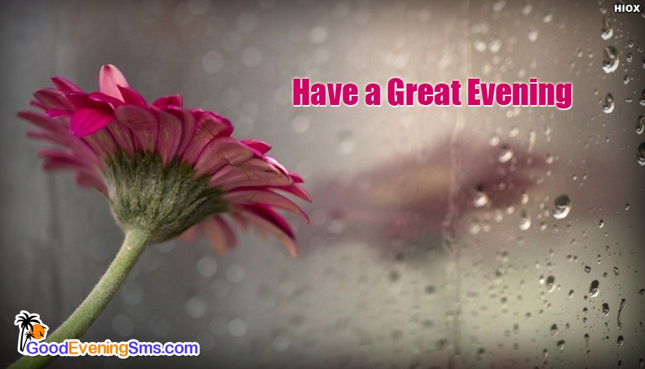 Have a Great Evening Wishes - Good Evening SMS for Everyone