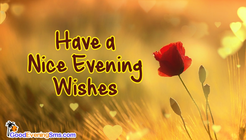 Have a Nice Evening Wishes - Good Evening SMS for Everyone