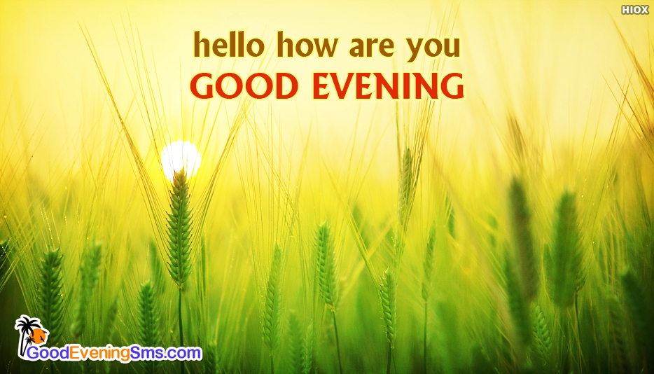 Good Evening SMS Messages For Best Friends