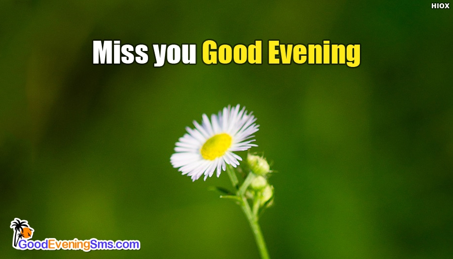 Good Evening SMS For Missing Someone