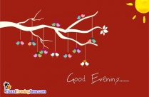 Good Evening Nature Gif