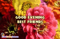 Good Evening Best Friends Ecard