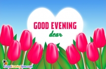Good Evening SMS for Girlfriend