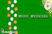Good Evening Flowers