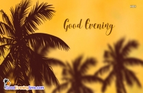 Good Evening Gif Download