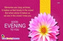 Good Evening Smile Quotes