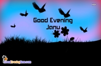 Good Evening Love Picture