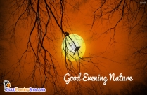 Good Evening Nature Quotes, Pictures